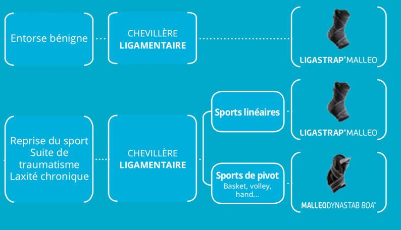 Chevillères proprioceptives Thuasne