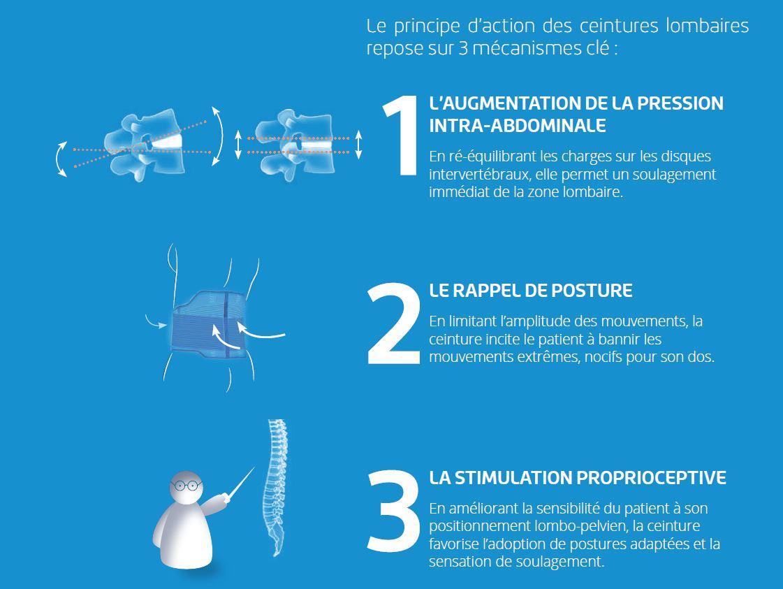 Principes d'action ceintures lombaires